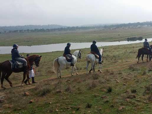 Actividades de Rutas a caballo en Casa los Pedroches