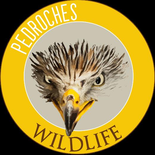 logo wildlife Los Pedroches